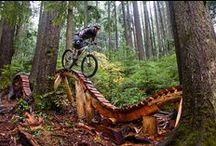 Mountain Biking &Cycling