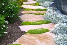 Gardening / Mostly Ideas for small, southern, city garden areas. / by Barbara Qualls