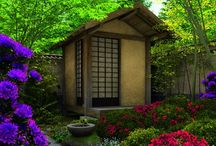 garden . SHED / by Denise Mares