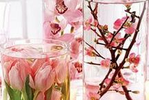 Centerpieces and Tablescapes / by Kathleen Rogers