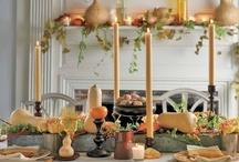 Thanksgiving & Fall / by Sadie Carol