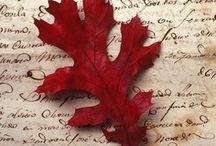 Autumn /  MY Season  / by Primitive Hare Isobel-Argante