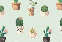 wallpaper | iphone