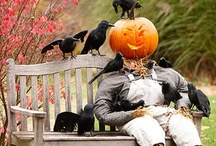 Halloween and Fall ideas / by Kelly Johnson