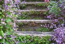 outdoors - garden pathways, stairs, retaining walls / by Paula Bell
