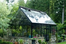 home - greenhouses, cold frames, raised beds, sheds, coops, outbuildings, wind and solar / by Paula Bell