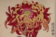 Japanese Art / by Ann Leadley