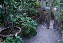 Garden - Terrace house