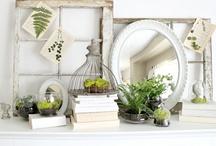 House Ideas. / I love decorating.   / by Rachelle Hoole