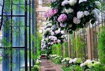 Gardens and Gorgeous Outdoor Places