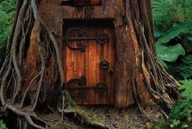In Through the Out Door 3 / by Kathy Mericle-Adkins