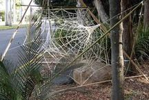 Mt Coot-tha webs / Web installation by  Bamboo artist Peter Wojciechowski and Web knitter Jude Skeers