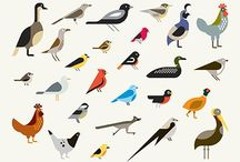 birds / by Heather Feather
