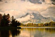 This Beautiful World / by Morgan