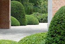 Pian harmoninen alapiha / Istutusideoita tasapainottamaan isoa kivettyä aluetta etupihalla. Ehdottaisin alapihalle istutuslaatikkoon pikkupuuta ja sen alle ikivihreätä maanpeittoperennaa. aidan viereen muotoon leikattuja pensaita (esim. palloja tai pikku pylväitä) tai kukkivia pensaita. Sora-alueelle talon alle soran joukosta nousemaan iiriksiä.