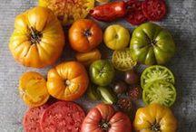 GROWING: Fruits, Veggies, & Herbs