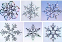 |LIBRARY| Science: Snowflake Bentley & Snow Crystals / Ideas for a program about Snowflake Bentley & the science of snow crystals / by Brittany Eastman