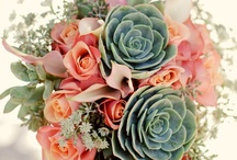 Wedded bliss / by Jill Madison