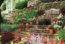 My Eternal Garden