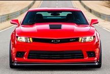 Fast Cars / The fastest, most exciting cars the automotive industry has to offer.