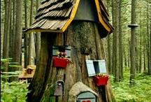 Into the Woods... / by Wilma J Harrington