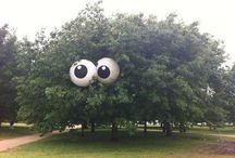 """Made Me Smile :)  / It made me smile on the inside :) Cuz we all know """"LOL"""" is usually a lie! Haha / by Ann Hartman"""