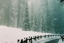 Winter Forest / things that inspired my Winter Forest Collection. Brrr! Baby, it's cold outside.