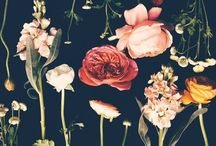Botanica / Plants and flowers in Botanical art,  Fashion and design through the ages. Inspires my 'Botanica' jewellery collection