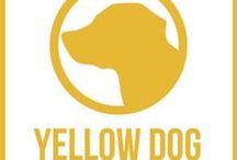 www.YellowDogPublishing.com