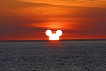 Disneyworld Dreaming / by Robin Liefeld