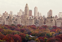 New York State of Mind / by Liz Humphrey