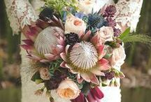 Bouquets/Boutonnieres/Centerpieces / Wedding flowers / by Savanna