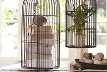 Decorating with Birdcages / What do to with that big birdcage? Here is some inspiration on what to play inside the birdcage if you don't have a bird and how to incorporate the birdcage into your decor.
