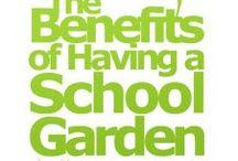 GROW baby GROW / school garden ideas