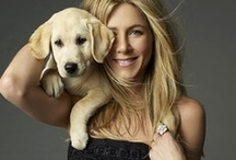 Stars and Their Pets