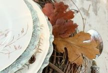 Thanksgiving Table and Deco / by Monika Baechler, Nutrition Specialist & Fasting Coach