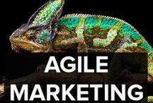 AGILE MARKETING / The latest news, ideas and developments in Agile Marketing. #agilemarketing