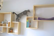 Cats (furniture, trees & toys) / Cats. You either love them or don't. (Homedit loves them.) Chances are, if you're checking out this page, you love your cat…almost as much as you're going to love these cat furniture, cat trees, and cat toys ideas.