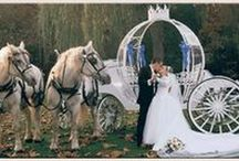Get Me To The Church . . . / Wedding limousines and carriages.