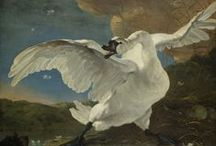 Swans / On this board we highlight various representations of swans. Because of the pure white plumage and the impressive size they have been subject in numerous myths and fairy tales. More images can be found on www.europeana.eu.