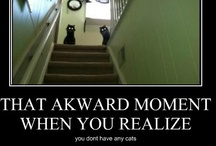 omgh FUNNY / having a rough day check these out and smile  / by Lisa F