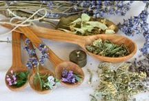 BOS: Herb & Plantlore / Mostly information on herbs: correspondences and what they are used for.....also, any online stores/suppliers and schooling on herbs / by Christina Fanning