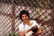 Rock stars with their cats and dogs  / Cool pictures of musicians with their pet dogs and cats, which show how even the most self-obsessed, narcissistic Rock god has a smidgen of humanity to care about someone other than themselves.  | www.petnook.in