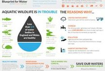 WWF Infographics & Ads / WWF ads, posters and infographics from across the world.