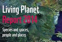 Living Planet Report / #LPR2014, #StateOfOurPlanet, Infographics and posters from the Living Planet Report. Find out more at wwf.org.uk