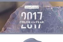 """2017 Paint Color of the Year - Violet Verbena / Violet Verbena is a gray-purple hue that idealizes the popular bohemian, """"gypset"""" lifestyle. This nuanced update on a classic shade adds depth, luxury & pampering to every space, making it the perfect backdrop for consumers looking to blend the masculine, the feminine, the mystic &  the modern.  Violet Verbena adapts to surrounding environments and complements a variety of design aesthetics, from playful rooms to tranquil spaces.  Violet Verbena is a moody purple with a chameleon-like presence."""