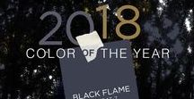 2018 Paint Color of the Year Black Flame / Dress your home in the new neutral, our PPG 2018 Color of the Year, Black Flame. Embodying the spirit of a tailored tuxedo or a little black dress, it is dressed-up, coveted, unapologetic and – most importantly – timeless. This statement-making black, infused with an undertone of indigo, evokes the privacy, hope and classic modernism that many consumers crave today.