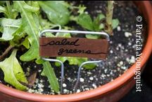 My Name Tag Project / The things I grow in my urban (NYC) got together and informed me that life in my urban terrace garden has become a real social networking opportunity that is being hampered by the fact that it is difficult to remember everyone's name what with over eighty different things making their home in my garden. I've remedied the situation by giving each of them their own name tag which was partially inspired by Bud Light @ http://bit.ly/yfgHki
