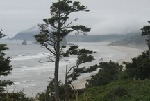 Oregon Coast / The mouth of the Columbia River at Astoria to California - so much beautiful coastline to explore. / by visual chick