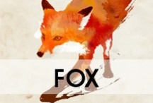 Fox / by YourDailyIntake.com